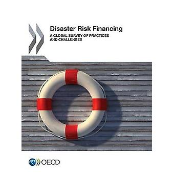 Ramp risico financiering A globaal onderzoek van de praktijken en uitdagingen door de OESO
