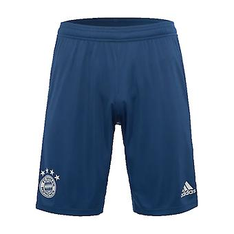 2019-2020 Bayern Munich Adidas Training Shorts (Night Marine) - Kids