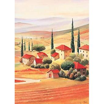 Tuscan Village V Poster Print by Renee