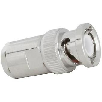 BNC connector Plug, straight 50 Ω SSB AIRCELL 5 1 pc(s)
