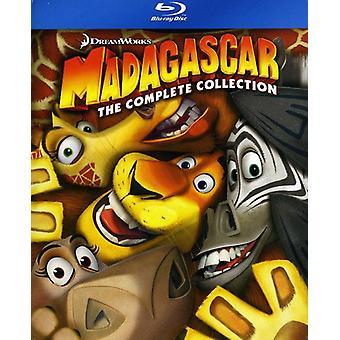 Madagaskar - Madagaskar: Complete Collection 1-3 [BLU-RAY] USA import