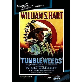 Tumbleweeds [DVD] USA import