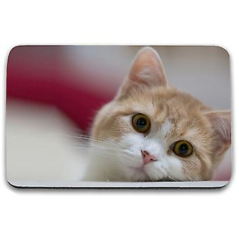 i-Tronixs - Cat Printed Design Non-Slip Rectangular Mouse Mat for Office / Home / Gaming - 0
