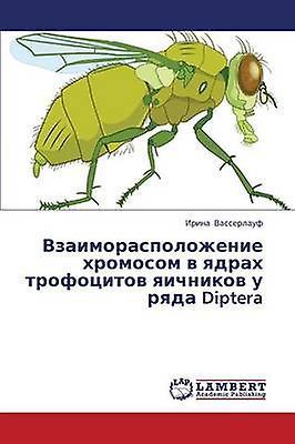 Vzaimoraspolozhenie Khromosom V Yadrakh Trofotsitov Yaichnikov U Ryada Diptera by Vasserlauf Irina
