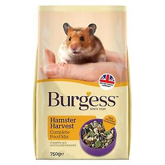Burgess Hamster Harvest 750g (Pack of 6)