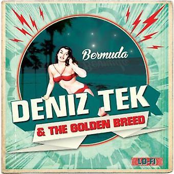 Deniz Tek - Bermuda [Vinyl] USA import