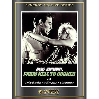 From Hell to Borneo [DVD] USA import