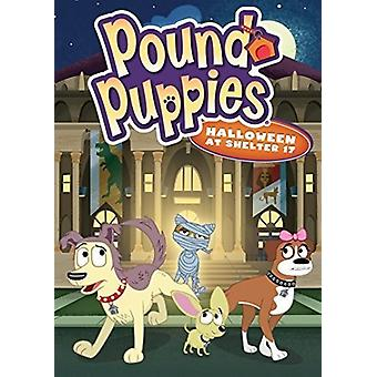 Pound Puppies: Halloween at Shelter 17 [DVD] USA import