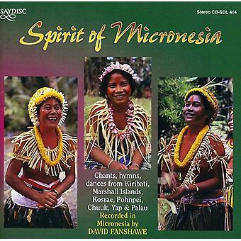 World Music-ånden i Micr - World Music-ånden i Micr [CD] USA import