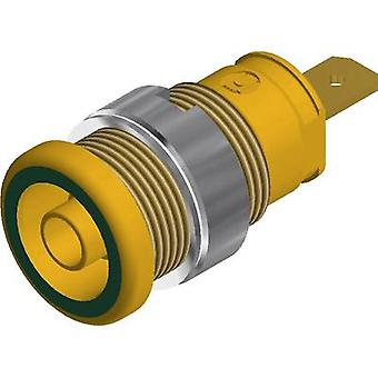 SKS Hirschmann SEB 2610 F4,8 Safety jack socket Socket, vertical vertical Pin diameter: 4 mm Green-yellow 1 pc(s)