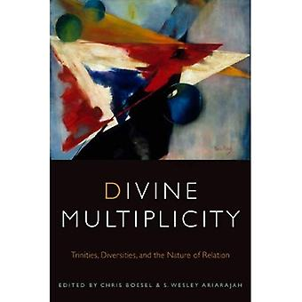 Divine Multiplicity: Trinities, Diversities, and the Nature of Relation (Transdisciplinary Theological Colloquia...
