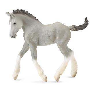 CollectA Shire Horse foal - Grey
