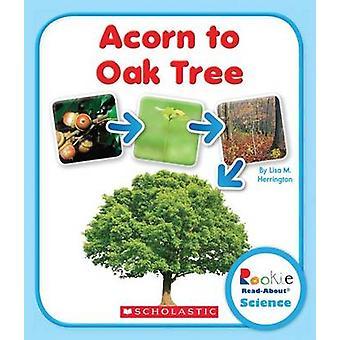 Acorn to Oak Tree by Lisa M Herrington - 9780531249758 Book
