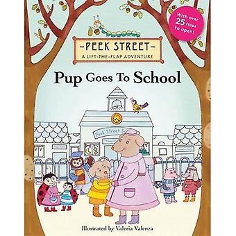 Peek Straat: Pup gaat naar School