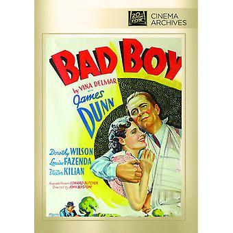 Bad Boy [DVD] USA import