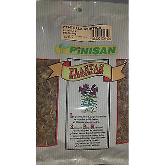 Pinisan Centella Asiatica bag 50 gr (Herbalist's , Plants)