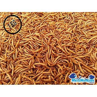 Vermi della farina 1kg secchi per pollame
