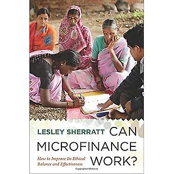 Can Microfinance Work?: How to Improve Its Ethical Balance and Effectiveness