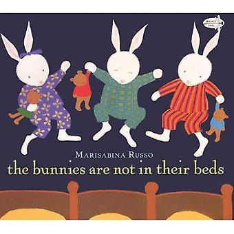 Die Hasen sind nicht in ihren Betten