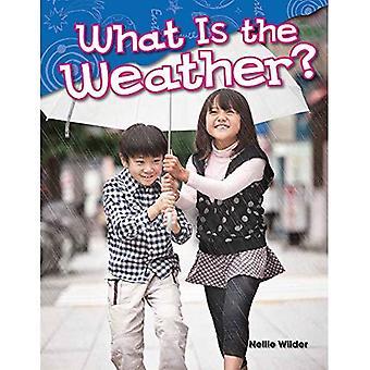 Quel est le climat? (Maternelle) (Lecteurs de Science)