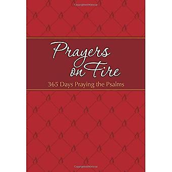 Böner i brand: 365 dagar be Psaltaren (Passion översättning)