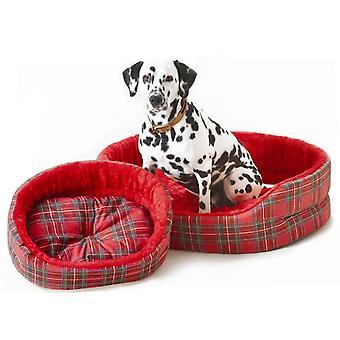Skotskternet Superbed rød 46cm (18