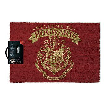 Official Harry Potter 'Welcome to Hogwarts!