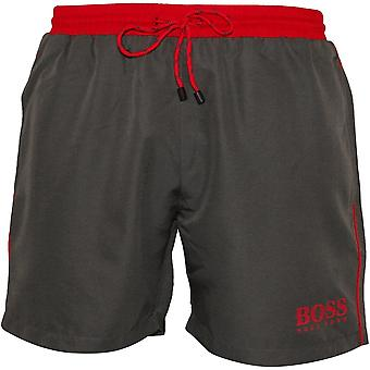Jefe estrella de mar Swim Shorts, gris con contraste de color de rosa