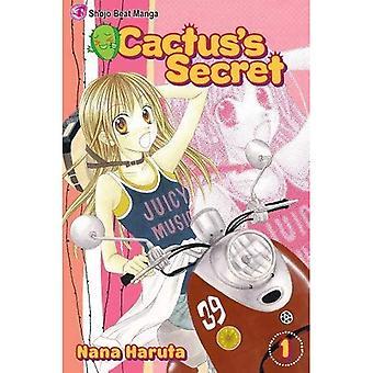 Cactuss Secret 1