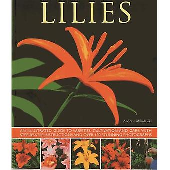 Lilies: An Illustrated Guide to Varieties, Cultivation and Care, with Step-by-step Instructions and Over 150 Stunning...