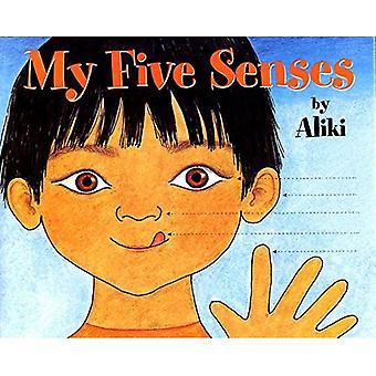 Mijn vijf zintuigen (een let's-read-and-find-out-book)