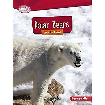 Polar Bears on the Hunt (Searchlight Books Predators)
