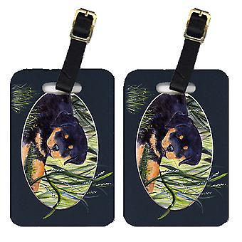 Carolines Treasures  SS8053BT Pair of 2 Rottweiler Luggage Tags