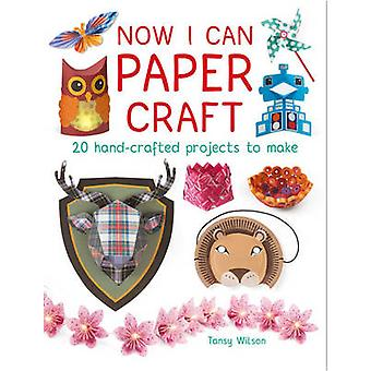 Now I Can Paper Craft - 20 Hand-Crafted Projects to Make by Tansy Wils