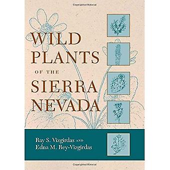 Wild Plants of the Sierra Nevada