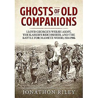 Ghosts of Old Companions: Lloyd George's Welsh Army, Kaiser's Reichsheer and the Battle for Mametz Wood, 1914-1916