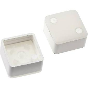 Switch cap White Mentor 2271.1210