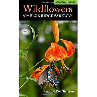 Wildflowers of the Blue Ridge (Wildflowers in the National Parks Series)