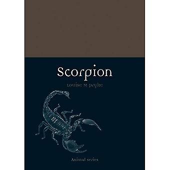 Scorpion (animale)