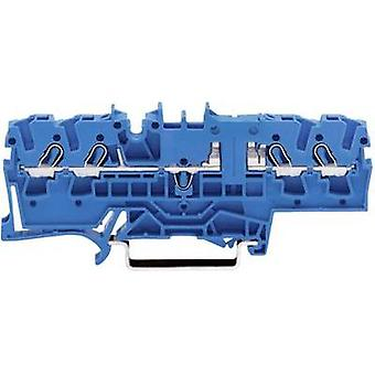 Continuity 5.20 mm Pull spring Configuration: N Blue WAGO 2002-1804 1 pc(s)