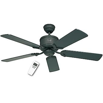 DC ceiling fan Eco Elements Graphite with remote control in various sizes