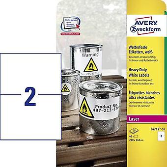 Avery-Zweckform L4717-20 Labels (A4) 210 x 148 mm Polyester film