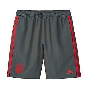 2018-2019 Bayern München Adidas vevd Shorts (Utility Ivy)