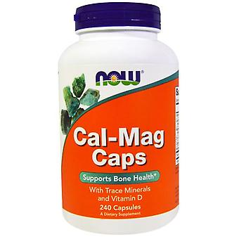 Now Foods Cal-Mag Capsules 240 Capsules (Sport , Athlete's health , Minerals)
