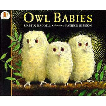 Ugle babyer af Martin Waddell - Patrick Benson - 9780744563139 bog