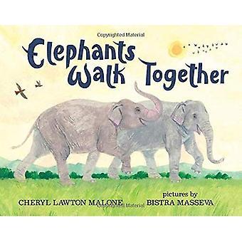 Elefanter gå tillsammans