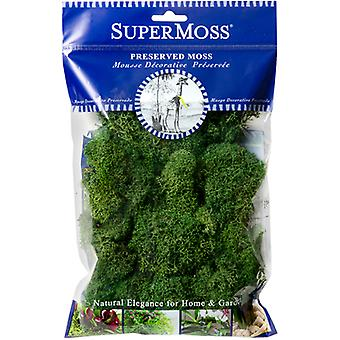 Preserved Glittered Reindeer Moss 2oz-Forest Green RM214-00