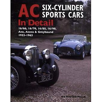 AC Sports Cars in Detail: Six-cylinder Models 1933-1963 (In Detail)