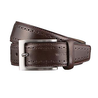 Windsor. Belts men's belts leather belt Brown 3172