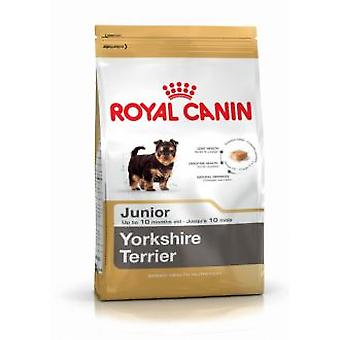 Royal Canin Yorkshire Terrier Junior (hundar, hund mat, torka mat)